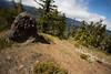 Kittitas, Mt. Baldy - Rotated camera motion on trail