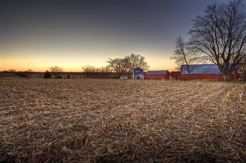 Late Autumn Fields
