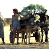 Meet the Baster farmers - proud of their mixed Dutch and African heritage, Namibia.