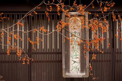 Shirikawa-go, Japan 2012