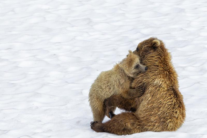 Hug from Mom