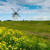 Windmill, Vihula, Estonia