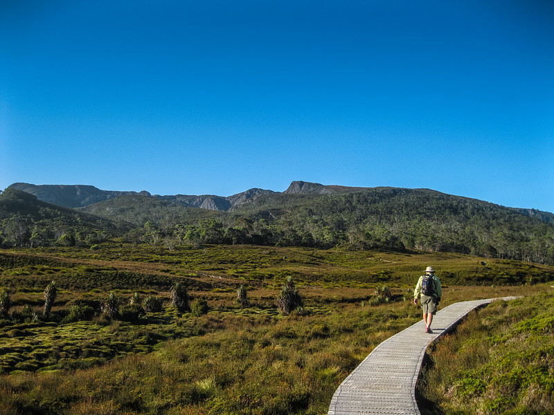 Cradle Mountain path, Tasmania, Australia