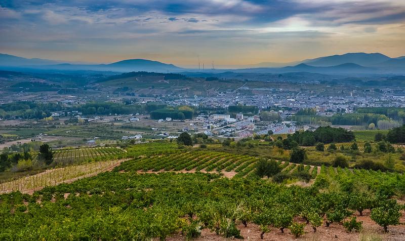 Vineyards, Bierzo, Spain