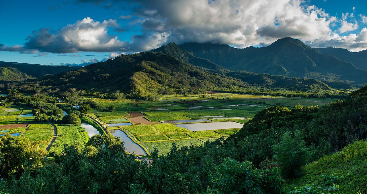 Honalei Valley, Kauai, Hawaii