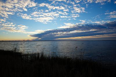 Lake Mattamuskeet 14