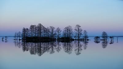 Lake Mattamuskeet 467