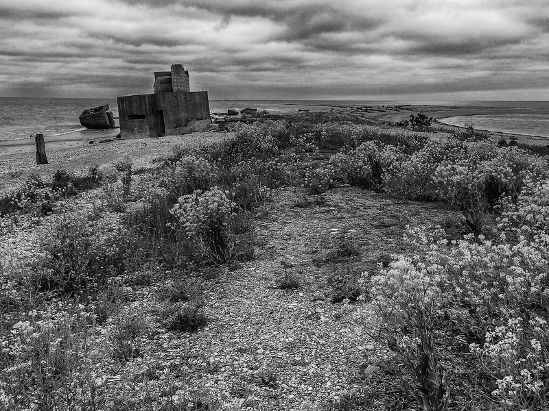 German World War II Bunker, Saaremaa, Estonia
