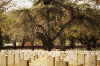 National Cemetary Beaufort.jpg