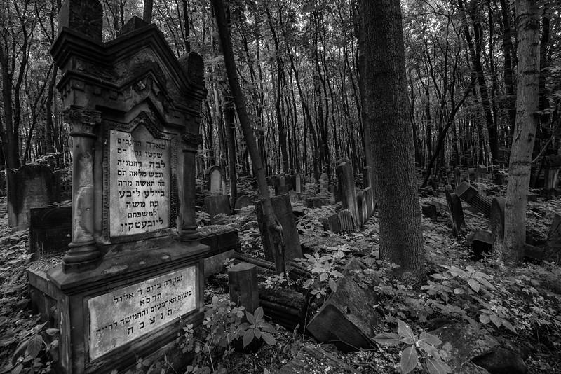 Jewish Cemetery, Warsaw, Poland
