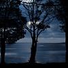 © 2013 Steve Schroeder - Study in Blue