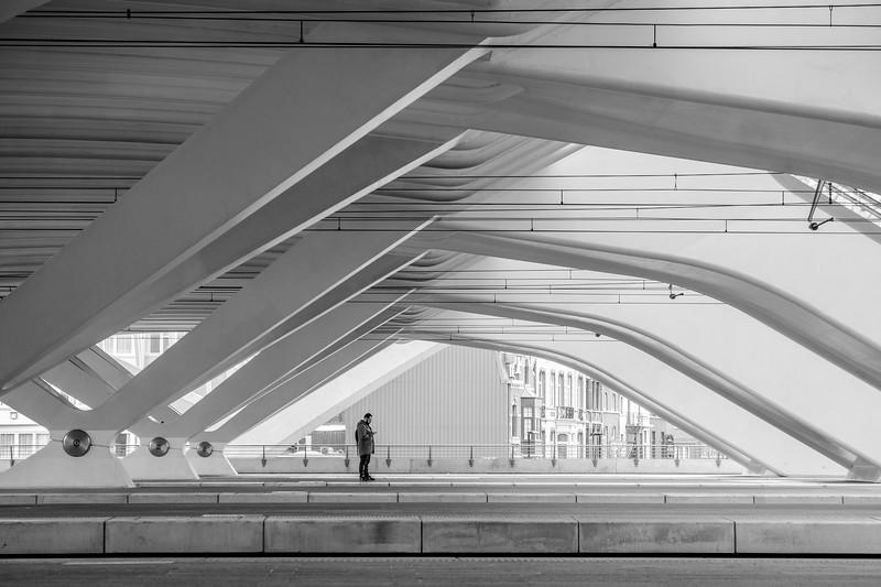Liège Guillemins Train Station