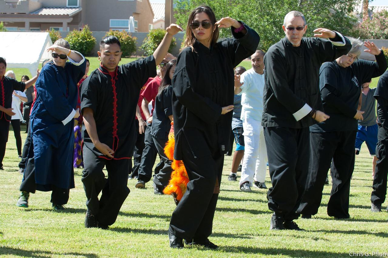 World Tai Chi and Oigong Day - April 29, 2017