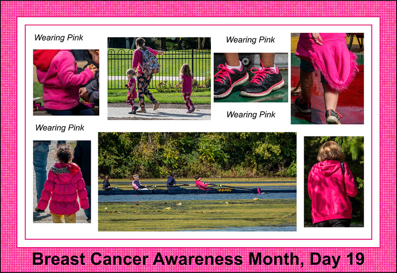 Breast Cancer Awareness Month, Day 19