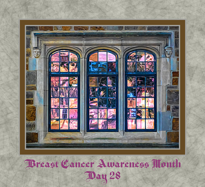 Breast Cancer Awareness Month, Day 28