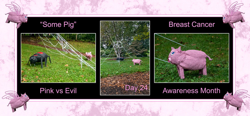 Breast Cancer Awareness Month, Day 24