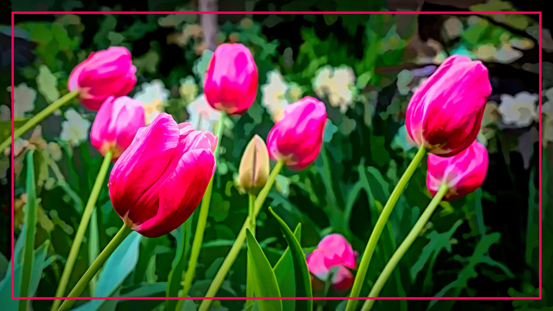 Tulips in a spring conservatory display - filtered