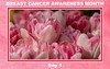 Breast Cancer Awareness Month, Day 1