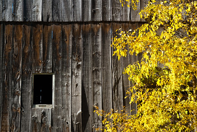 The Barn Window.