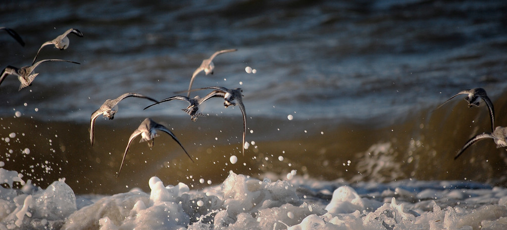 Avoiding Waves