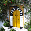 COLOURFUL DOOR TUNIS by JOHN BROOKS
