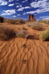 Monument Valley, Navajo Tribal Park 2001