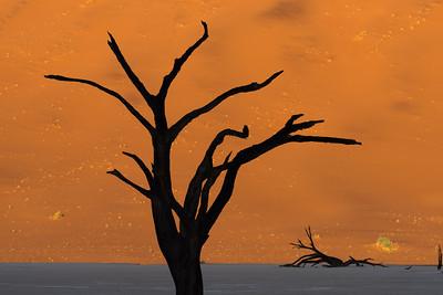 Deadvlei, Sossusvlei National Park, Namibia 2015