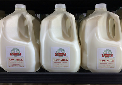 "One of the great raging American controversies is whether raw milk, one of the most dangerous fluids known, should be retailed to the trumpen-proletariat. Idaho, a leading flyover state, populated by roving bands of deplorables, has decided that people should be free to purchase raw milk. Other states opt for strict regulation of this dangerous substance. Beverage choice must be regulated for the common good. It's crap like this that led to Trump. Here's the correct philosophy: regulation should only be enacted when there is an overwhelming public interest. Otherwise ""freedom"" is a meaningless buzz word."