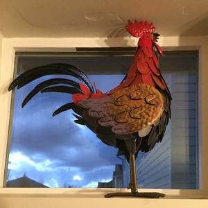 When we moved into our house we had a couch and a mattress.  We've been slowly filling the place ever since. The other day Mali picked up this chicken sculpture. Mali's mother Mahin was fond of chickens and it reminds both of us of her when we look at it.
