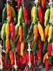 Colorful ceramic chilies concentrate contemplation.