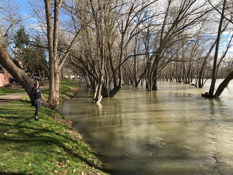 The Boise River is flooding. This was hardly unexpected. We just had one of the snowiest winters on record in the southern Idaho and all that snow is now melting and flowing towards the Pacific.