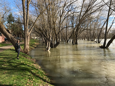 The Boise River is flooding. This was hardly unexpected. We just had one of the snowiest winters on record in southern Idaho and all that snow is now melting and flowing towards the Pacific.