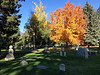 It's a shame the residents of this cemetery are missing the perfect autumn colors.