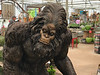 It turns out that looking for Bigfoot in the hills is a waste of time. He hangs out in garden supply stores.