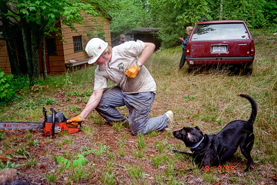 My first mother-in-law loved to cut back brush at her cottage. As she got older the task of bushwacking fell to other family members and inlaws. Here I am firing up a bush massacring chain saw while my useless black dog Charlie crouches in the foreground and my kids aimlessly wander in the background.  I have fond memories of all my dogs with the sole exception of Charlie. Charlie was a pathetic creature. My daughter picked him out of the pound as a reward for enduring a painful medical test. Charlie bonded very tightly with my first wife and suffered severe separation anxiety when she wasn't around.  Once he chewed up the Venetian blinds in our sunroom. Chewing the blinds was bad enough but he cut his mouth while doing it and then bled all over the house. Charlie was a freaking joy.