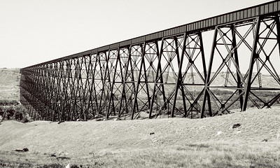 During the many years I lived in Edmonton and Calgary I often drove down to Livingston and Bozeman Montana to visit relatives. A prominent landmark on the way is the High-Level Bridge in Lethbridge. This rail bridge has appeared in many photographs and movies. It appears in the Days of Heaven, a dreadful Richard Gere abomination that tried to pass off the Lethbridge and Drumheller valleys in southern Alberta as the north Texas panhandle. I've seen both locales and trust me they do not match. How do geologists watch movies guilty of the crime of landscape substitution without cringing?