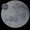 THE MOON AND SIXPENCE by AUSSIE BULLMAN.