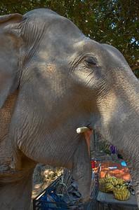 Chiang Mai, Thailand 2005