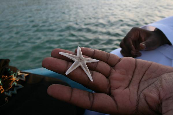Starfish in Hamad's hand, Oman