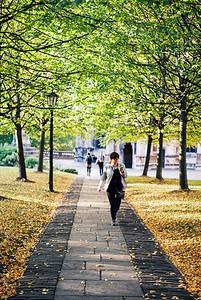 Autumn Colours in Bristol