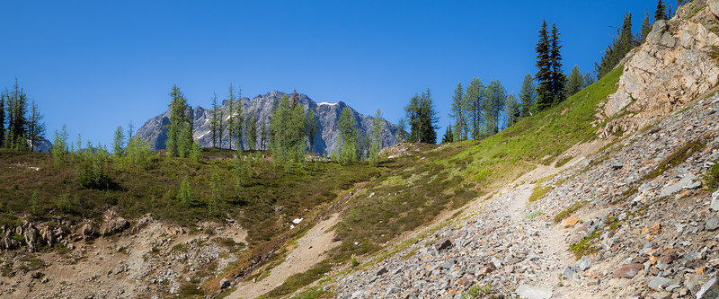 Rainy Pass, Easy Pass - Approaching the pass with green larch trees