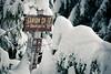 Stevens Pass, Lanham Lake - Trailhead sign buried under snow