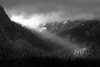 Snoqualmie Pass, Keechelus Lake - Sunbream breaking through storm clouds and illumating a leaning tree, black and white