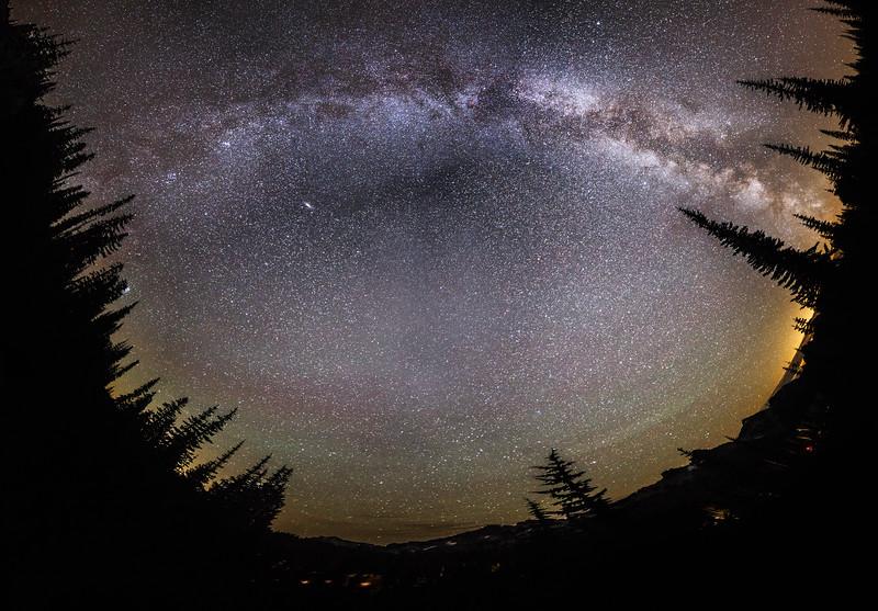 Rainier, Paradise - Milky Way panorama overhead surrounded by trees