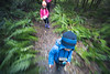 North Cascades, Newhalem - Motion of kids hiking through forest