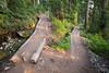 North Cascades, Cascade Pass - Corner switchback on trail