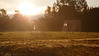 Redmond, Marymoor - soccer goal posts at sunrise, backlit with the grass in focus
