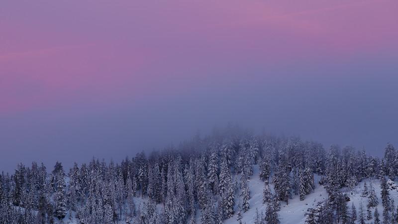 Kittitas, Blewett Pass - Pink colors of sunrise over snowy mountain scene