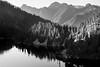 Snoqualmie Pass, Snow Lake - Sunset light cast on trees ringing Snow Lake, monochrome