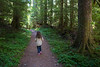 Darrington, North Fork Sauk - Little girl walking on trail through forest